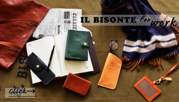 ILBISONTE for work