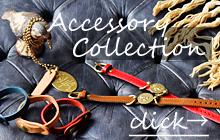 AccessoryCollection